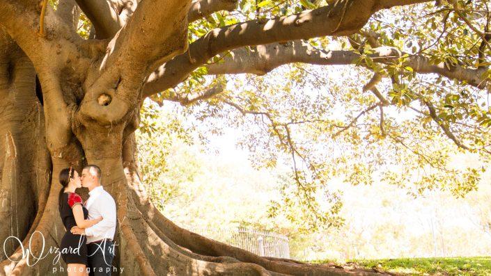 Couple kissing under big tree at Sydney Botanic Gardens.